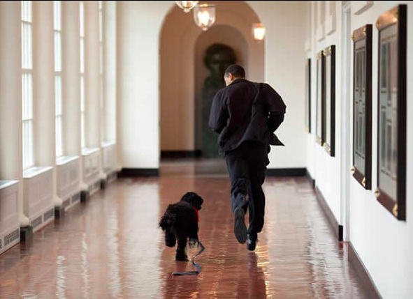 obama-running-with-dog